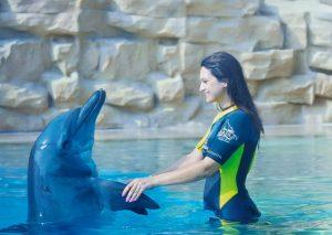 andreea-cu-delfinul